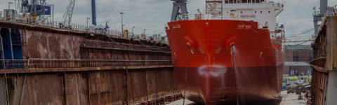 Worldwide Dry Docking Supervision
